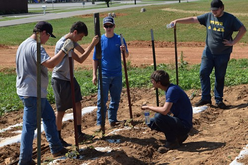 Agriculture students getting firsthand experience working in school garden