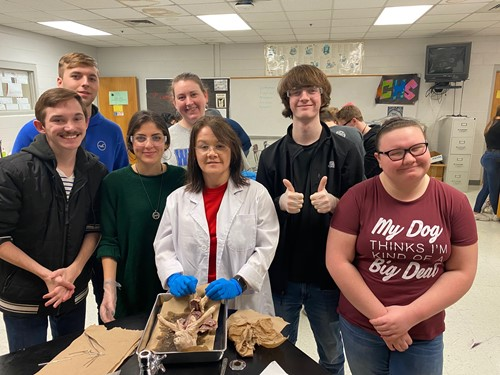 Biology students learn how body systems work together to maintain homeostasis