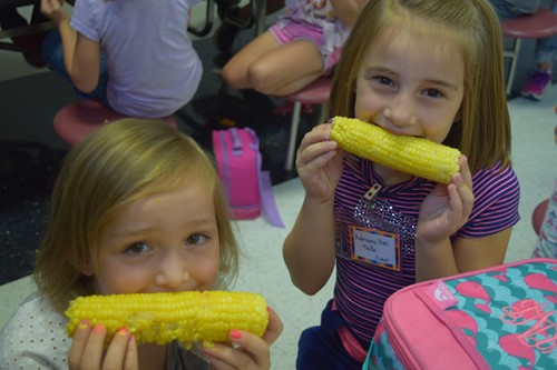 Two little girls enjoy the corn