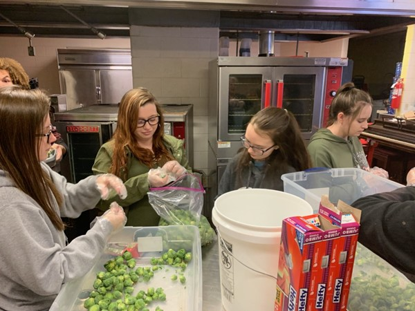 Consumer Science students help harvest brussel sprouts for cafeterias
