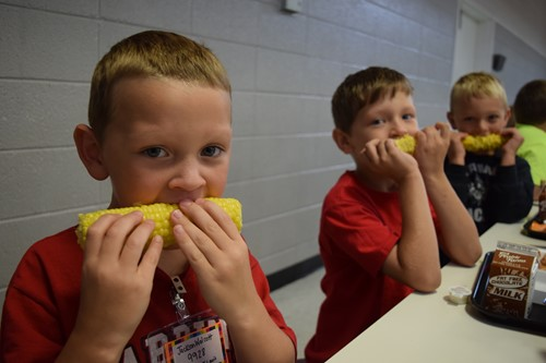three little boys enjoy the corn