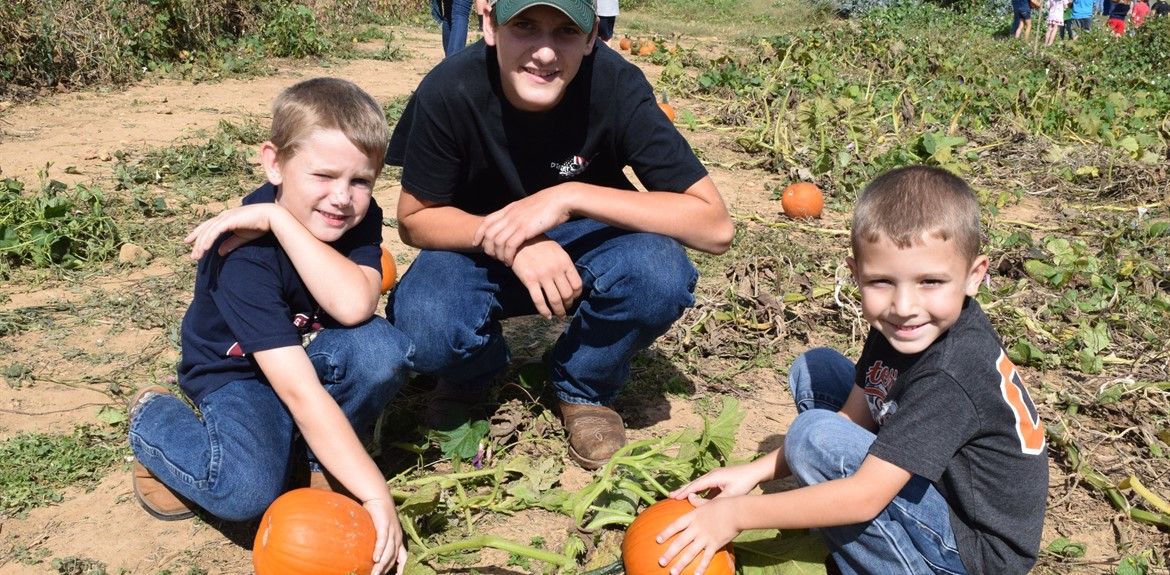 Bell Elementary students enjoy picking pumpkins from the school garden